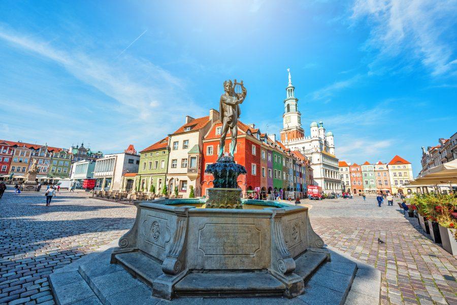 Praca w miastach wielkopolskiego